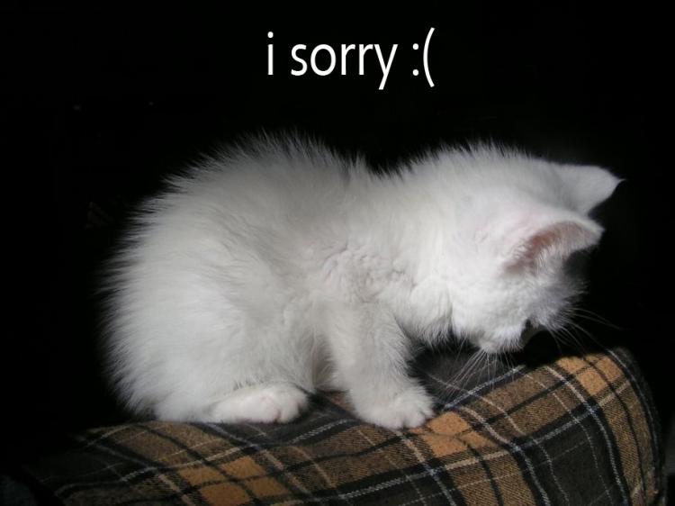 i-sorry